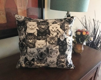 Throw Pillow Cover   Home Accessory   Cats Kittens Pillow