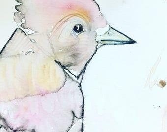 original bird art /bird painting