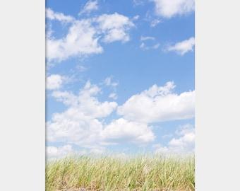 Minimalist Photo, Blue Green Photo, Grass and Sky Photo, Falmouth Beach Photo, Blue Sky Photo, Tall Green Grass, Landscape Photo, Cape Cod