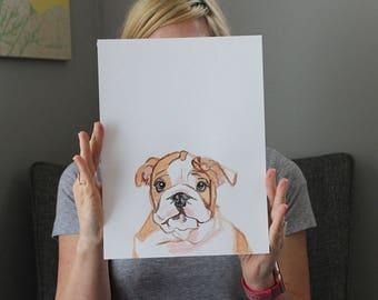 A Bulldog Named Brisket
