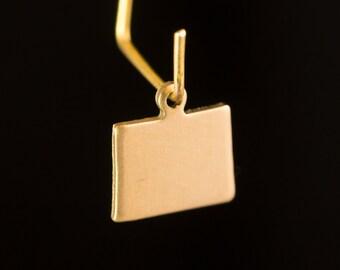 Raw Brass Tiny Colorado Blank State Charm Drops (2) chr229Z