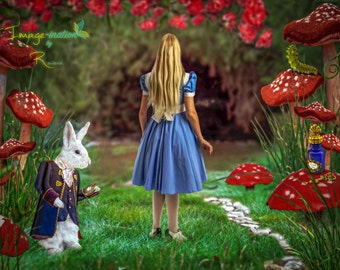 Digital backgrounds| digital backdrops| Alice |White Rabbit |Alice and White Rabbit| Tea Party  | Alice in Wonderland | 5 jpegs | value pack