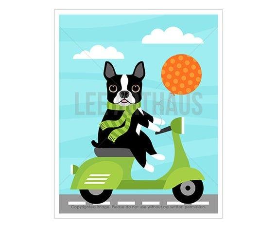 3D Boston Terrier Print - Boston Terrier Dog on Blue Vespa Wall Art - Vespa Print - Dog Print - Dog Lover Gift - Funny Dog Art - Dog Nursery