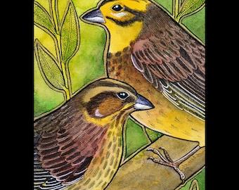 Yellowhammer songbird - Original Art