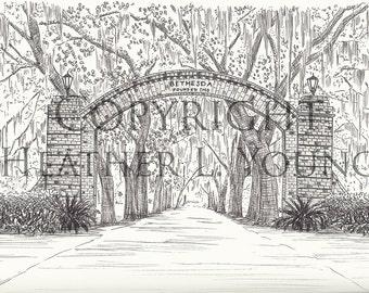 Bethesda Gate Savannah Pen and Ink Print - Black and White Fine Art Print