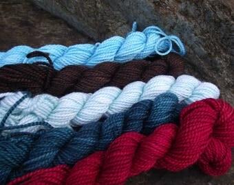 Merino wool Baby alpaca, Silk ,hand dyed DK sport yarn kit--Little Bird