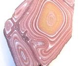 Vintage Utah Wonderstone Lapidary Slab Slice