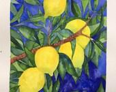 UNFRAMED Original Watercolour Painting Lemon Tree Close-up