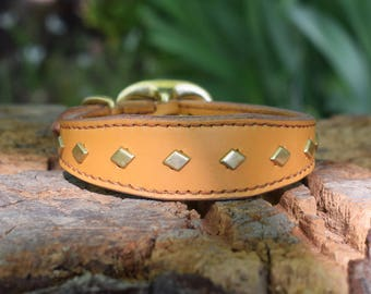 Studded Leather Dog Wide Collar with Diamond Brass Studs - size S