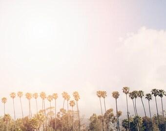 "Santa Barbara Palm Trees // Fine Art Print // California Beach Photography Print for Modern Decor // Retro Golden Pastel Print ""Palm Beach"""