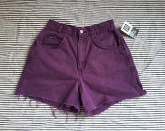 "26.5"" Waist / Denim Cut Offs / Chic Purple Denim Shorts / High Waisted Hot Pants /  Jean Shorts / Bleached Out"