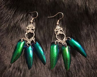 Jewel Beetle Wing Chandelier Earrings, Taxidermy, Oddity, Elytra