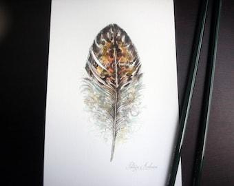 Handpainted, Original 4x6, Watercolour, Feather Study No.36. NOT A PRINT , owl, Original Painting, fine art-