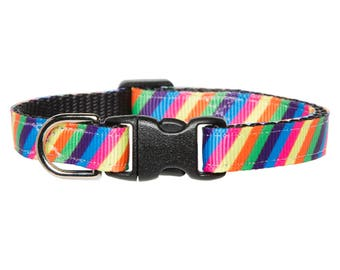"""Cat Collar - """"The Hello Sunshine"""" - Rainbow"""