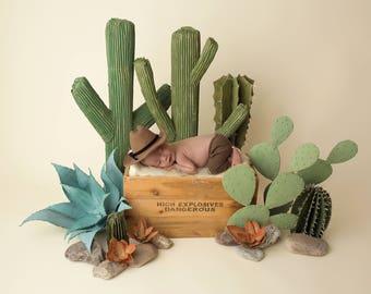 "Digital Backdrop- ""Song of the Desert""- Newborn Prop - Cowboy Cactus"