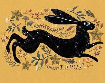 Lepus A3 print