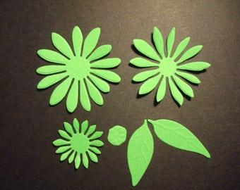 Fustellato fiore e foglie 2 set (6pz per set) fustellato in cartoncino.Ideale per scrapbooking e decorazioni.
