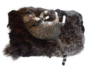 Cruelty Free, Border Leicester/Finn Lamb, Cat Bed, Dog Mat, Ethical Sheepskin, Felted Wool, Fleece Rug, Natural Pet Bed, Pet Blanket