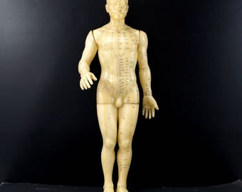 "Vintage Male Acupuncture Model / Medical Model, 19-1/2"" tall (c.1970s) - Home or Office Decor, Medical Oddity Collectible, Altered Art"