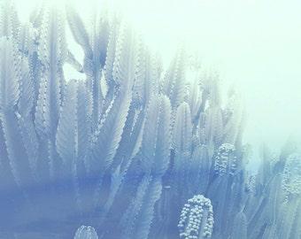 California Cactus, Modern Wall Art, Abstract Botanical Landscape, Ocean, Coast, Cactus, Minimal Home, Modern Styling, Pale Pastel, Dreamy
