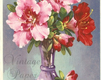 Pink Hibiscus Flowers in Purple Vase Antique French Postcard Post Card from Vintage Paper Attic