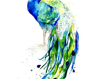 "Giclee Print: Blue Peacock ""Peacock Prince"" (Watercolour painting)"