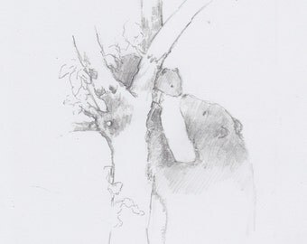 Original Sketch 'Bear & Cub'