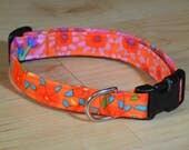 Spring Kaffe Fassett  cotton Dog collar Modern dog collar