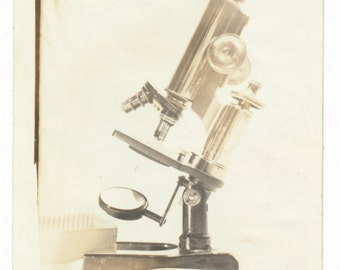 Brass Microscope photograph found old photograph science medical medicine biology scientific instruments