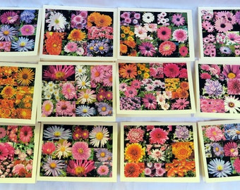 Collage of Painted Mums - Notecards