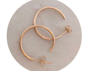 Sweet Small Gold Hoops