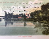 Edwardian Era Argentine Postcard with Beautiful Penmanship