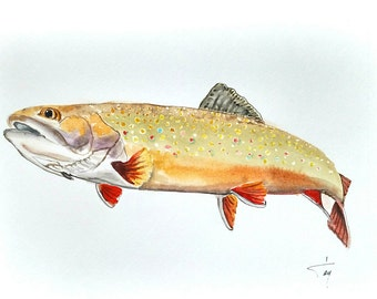Trout Watercolor Painting / Trout Wall Art / Original Watercolor Painting / Fish Painting