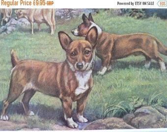 SALE WELSH CORGI Dogs Vintage Mounted 1958 corgi dog plate print Unique Thank you, Congratulations, Birthday gift