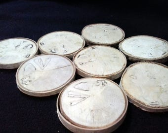 White Birch Branch Slices - 8 Beautiful Medium Wood Slices, White Spalted Wood with Woodgrain and Bark, Mini Cordwood, Tags, Decorations