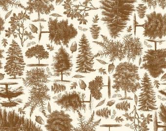 C4011-Brown Trail Mix by Riley Blake Designs 2 yards