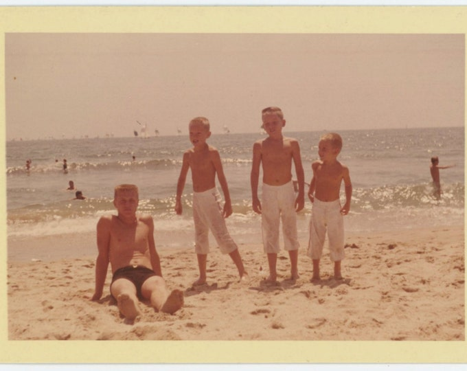 Vintage Photo: Beach Boys, c1960s (611515)