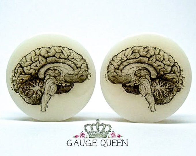 "Anatomical Brain Plugs / Gauges. 4g /5mm, 2g /6.5mm, 0g /8mm, 00g /10mm, 1/2"" /12.5mm, 9/16"" /14mm,5/8"" /16mm,3/4"" /19mm,7/8"" /22mm,1"" /25mm"