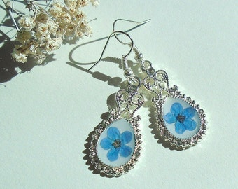 Forget-me-not Real Pressed Flower Jewelry Filigree Silver Plated Earrings