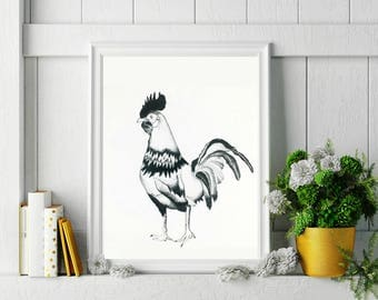 Rooster Ink Drawing 11x14 inches