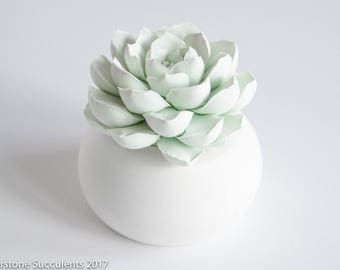 Succulent Sculpture Succulent Gift Unique Indoor Planter Art Object Tabletop Desktop Accessory, Modern Minimalist Home Office Decor