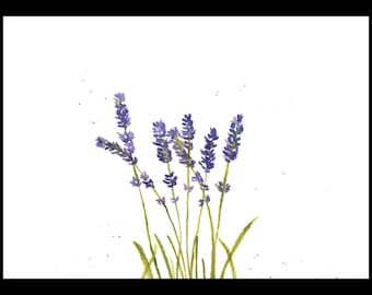 Lavender art original watercolour lavender painting lavender illustration one of a kind kitchen decor wall art flowers artwork 12 X 9 inches