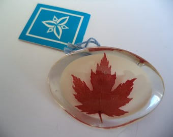 Fabulous Zinser Clear Resin Canadian Maple Leaf Brooch/Pin