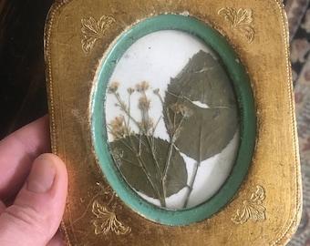 Flower Press (Italian gold filigree frame, retro green)