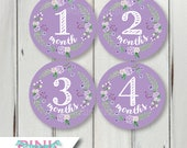 Custom Baby Shower Stickers for Alex - 2 inch round - 1 sheet of 20