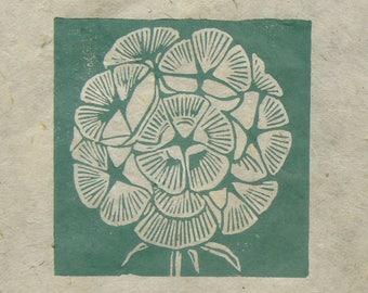 Scabious seed head mini linocut print