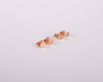 2 Pairs Discs Minimal Rose Golden A Set Of Studs Disc  Earstuds  Silver 925 Silver Rosegold Plated Studs Earrings Circle Golden Disc