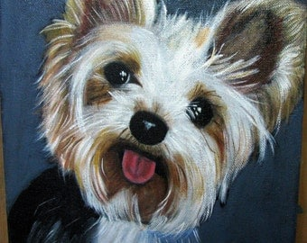 An adorable happy Yorkshire Terrier , cotton canvas, 23 cms width, 28 cms height, painted in oils