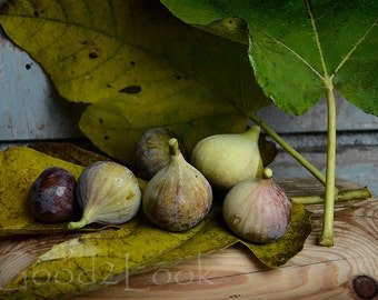 Food still life photography fig photography rustic kitchen decor fruit photo