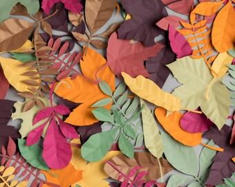Leaf Print, Leaf Art, Leaf Poster, Paper Leaves, Home Decor, Wall Art, Autumn Leaves, Fall Leaves, Botanical Print, Botanical Poster